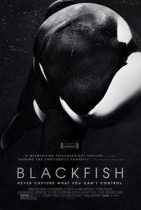 Cartel del documental Blackfish